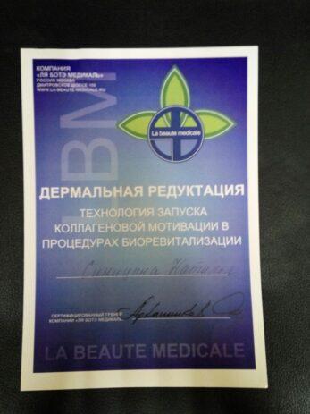 img 20160328 wa0040 0 347x463 - Синицына Наталья Сергеевна