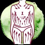 limfodrenazh 150x150 - Лимфодренаж